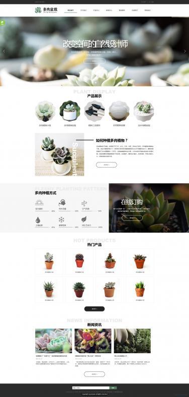 花卉网站模板